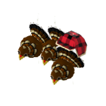 Icon turkeys.png