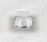 Angel Wings Preview Back.png