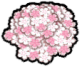Cherry Blossom Pile.png